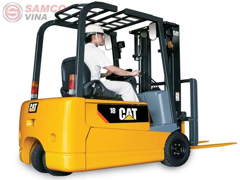 Nhà cung cấp các dịch vụ nâng hạ hàng hóa và cho thuê xe nâng